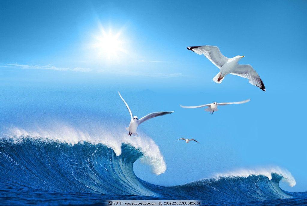 飞翔 蓝天 白云 海鸥 波浪 太阳 海之畅想 画册设计 广告设计模板 源