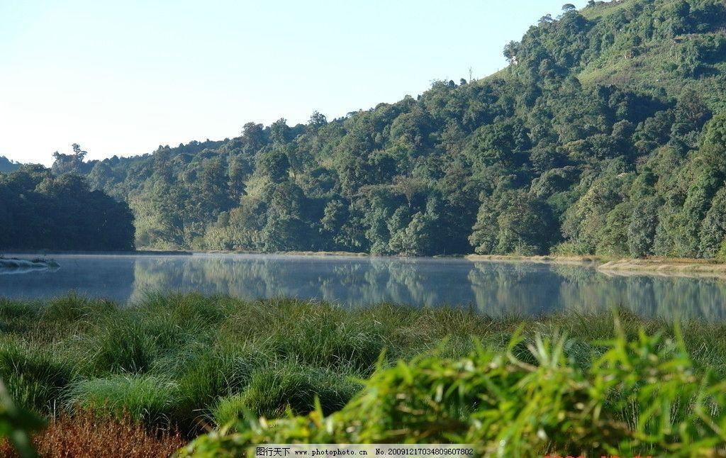 龙塘 湖面 青山 普洱 中国茶城 古茶树 茶园 茶山 自然风景 自然景观