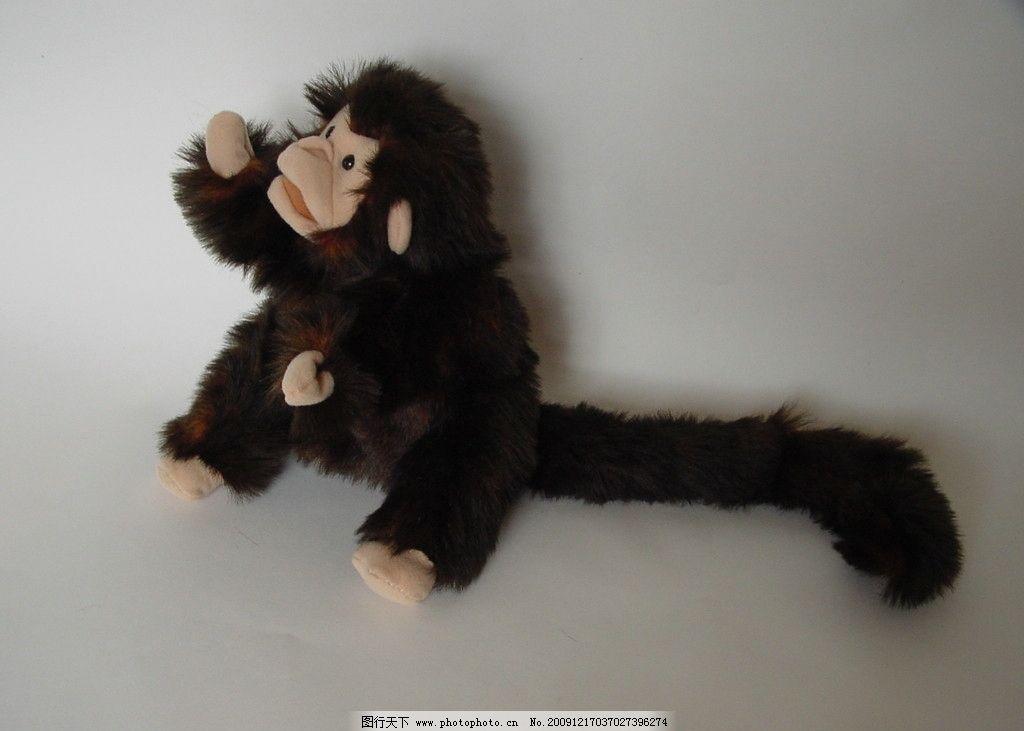 小猴子 可爱