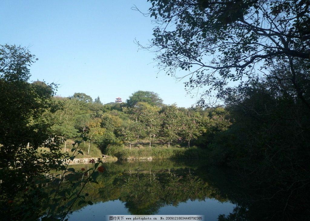森林公园 山光水色 风景 大地 水波 倒影 树林 天空 山野风光 山水