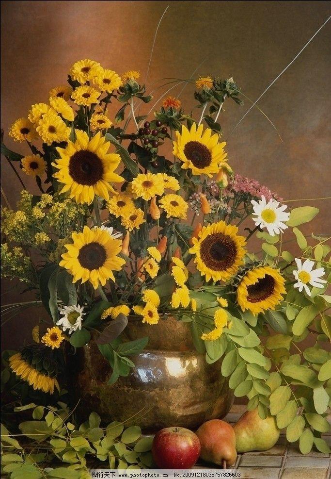油画般的插花艺术 向日葵 鲜花 水果 华丽 欧式 油画风格 摄影