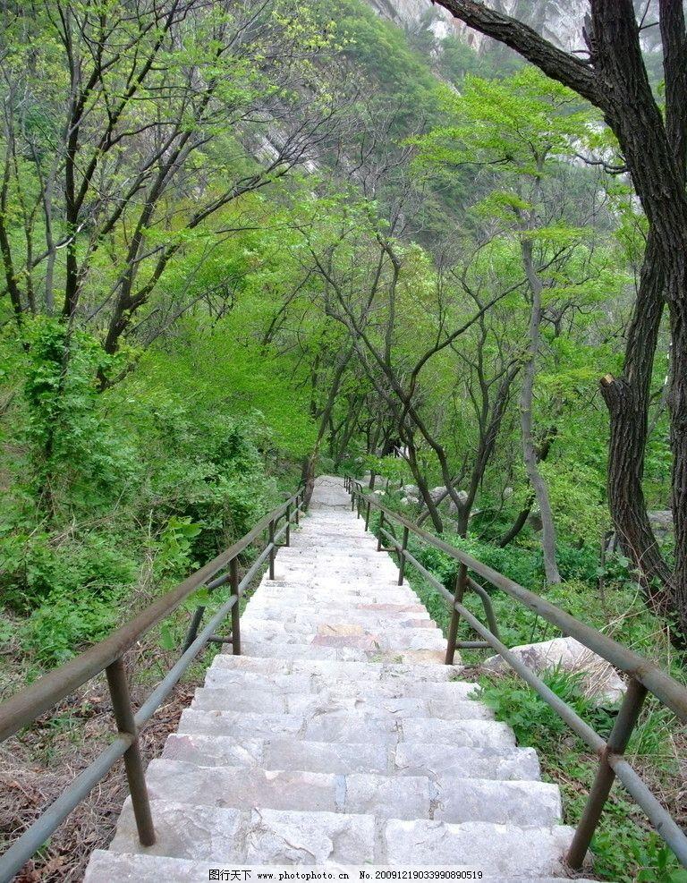 嵩山石阶 嵩山 风景 石阶 国内旅游 旅游摄影 摄影 72dpi jpg