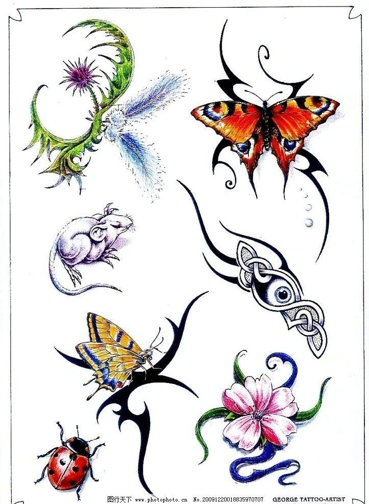 纹身 动物 蝴蝶 花朵 凤凰 七星飘虫 老鼠