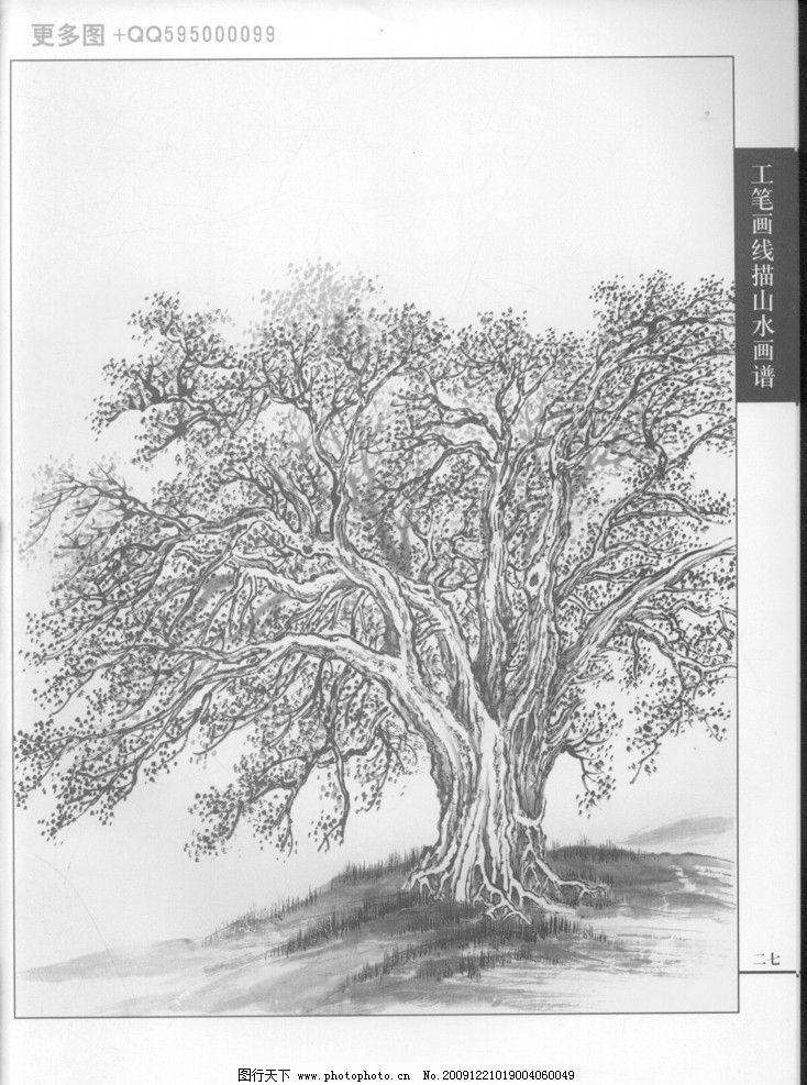 工笔画线描山水画谱树石17 白描 黑白稿 手绘 线描树 线描石