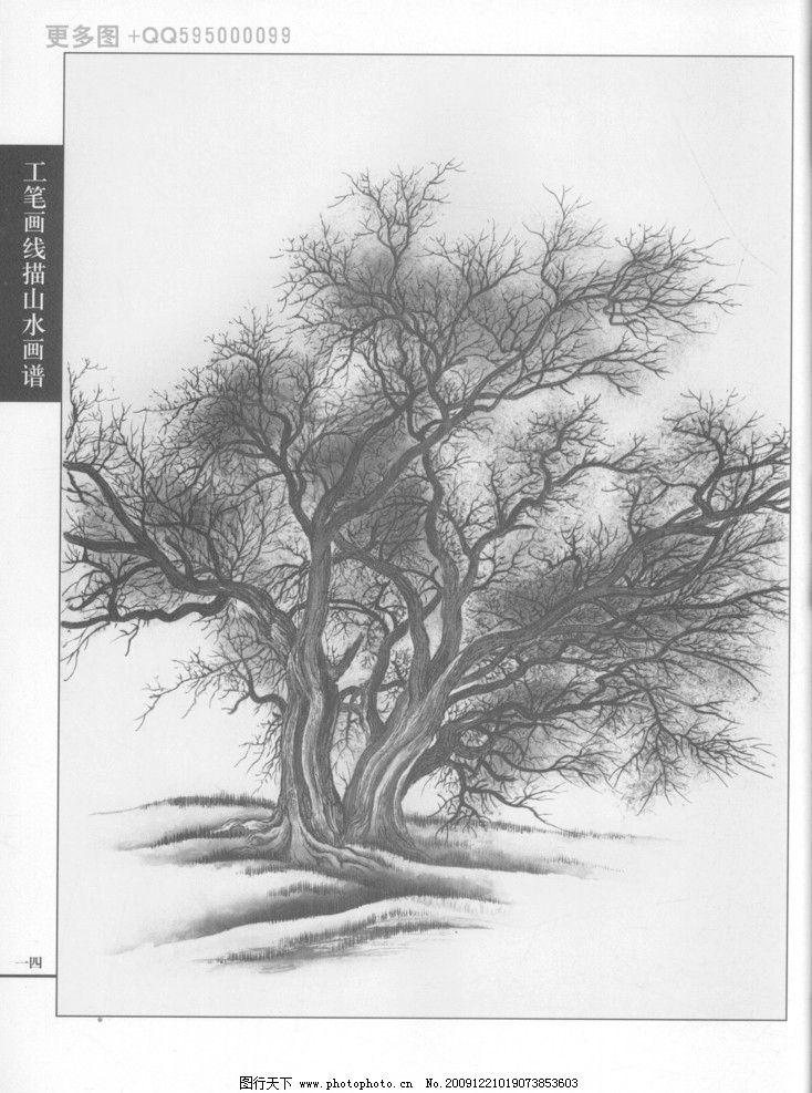 工笔画线描山水画谱树石 白描 黑白稿 手绘 线描树 线描石 线描风景