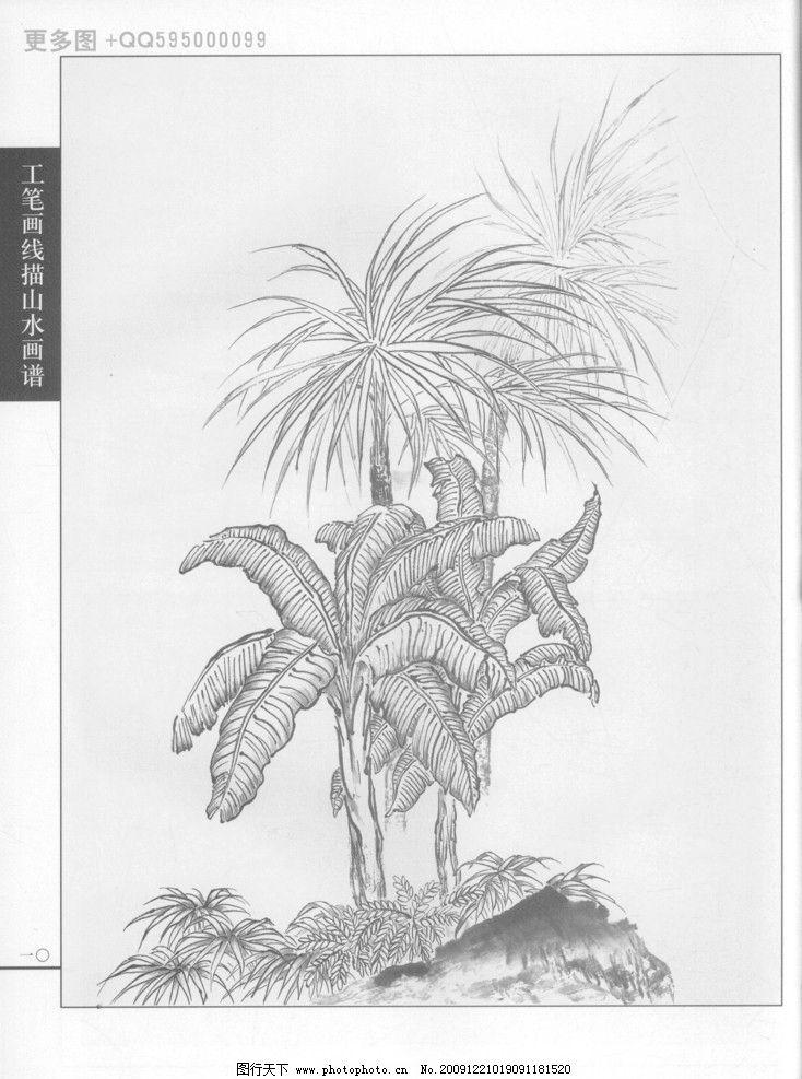 工笔画线描山水画谱树石09图片