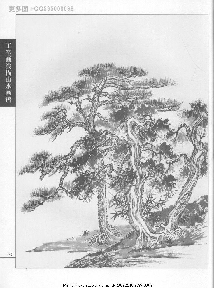 树石 工笔画 白描 黑白稿 手绘 线描山水 线描树 线描石 线描风景
