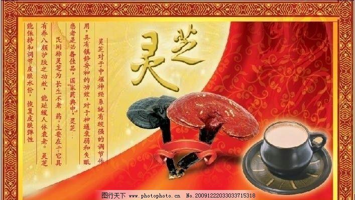 灵芝包装盒 灵芝 花纹 杯子 龙 中国龙 300dpi psd分层素材 丝带 金