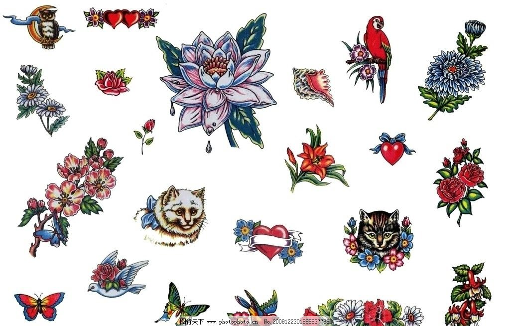 纹身花朵动物图片