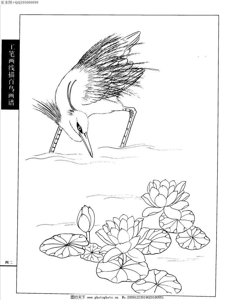 工笔画鸳鸯白描图