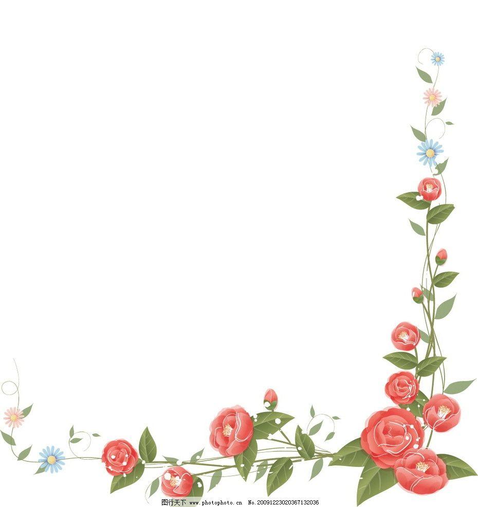 花边6图片