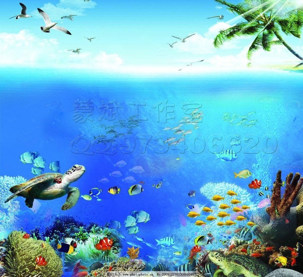 海底世界图片,海洋 海龟 海鸥 海鸟 鱼 珊瑚 椰树-图