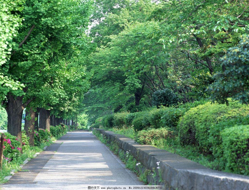 漂亮背景 背景 蓝天 白云 街道 城市 树 树林 自拍风景 自然风景 旅游