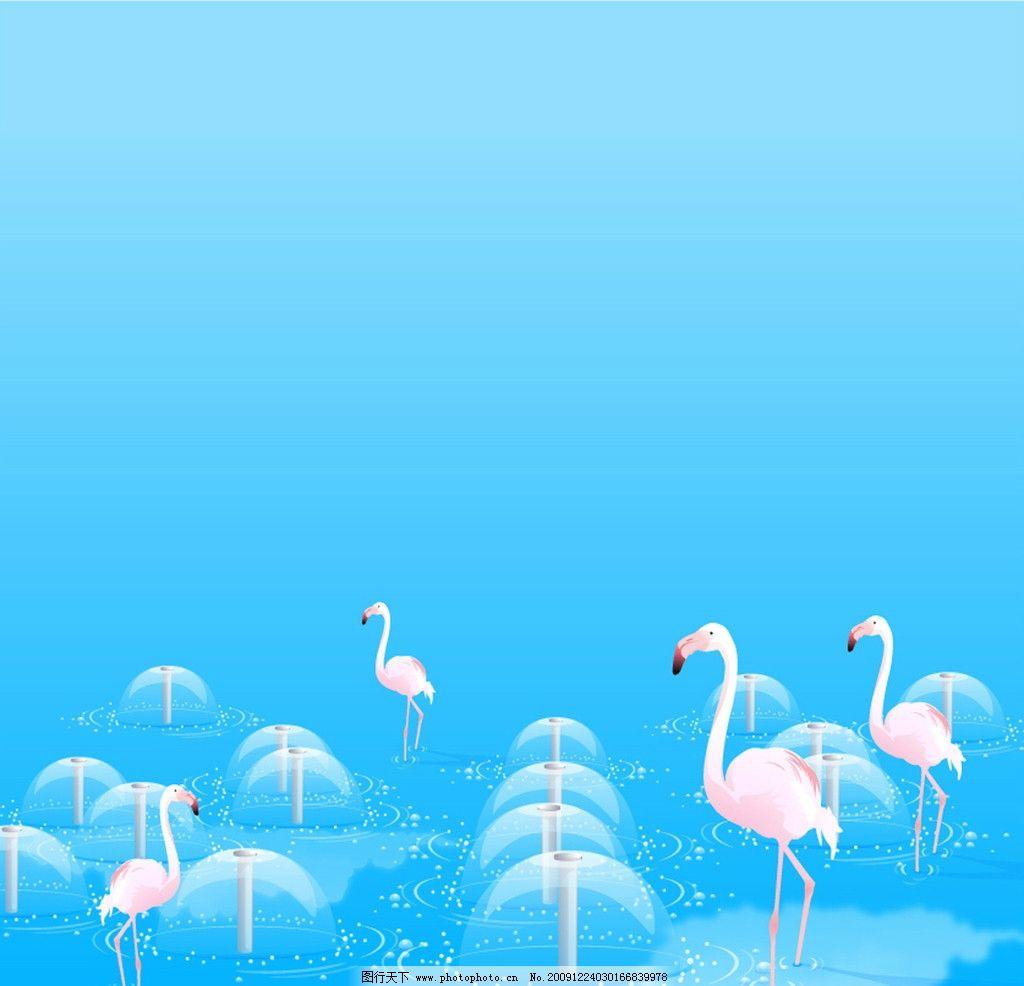 喷泉 鹅 天鹅 水 水池