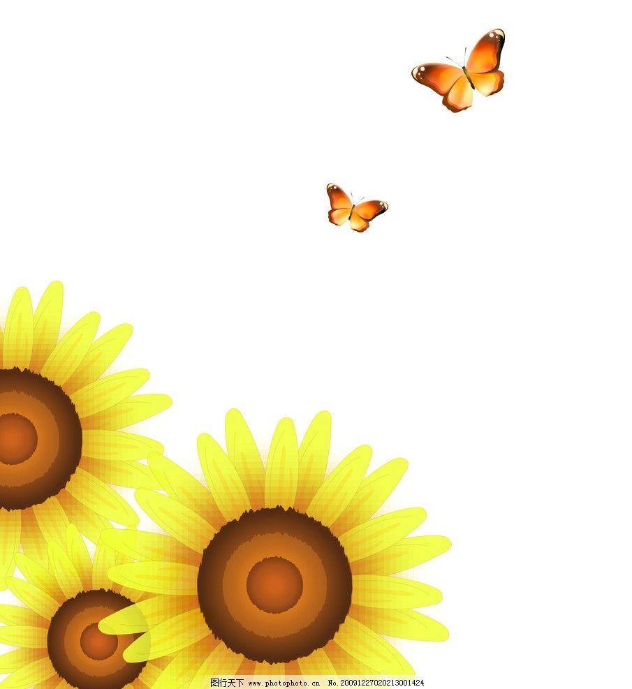 太阳花开 太阳花 向日葵 蝴蝶 jpg 背景底纹 底纹边框 设计 72dpi