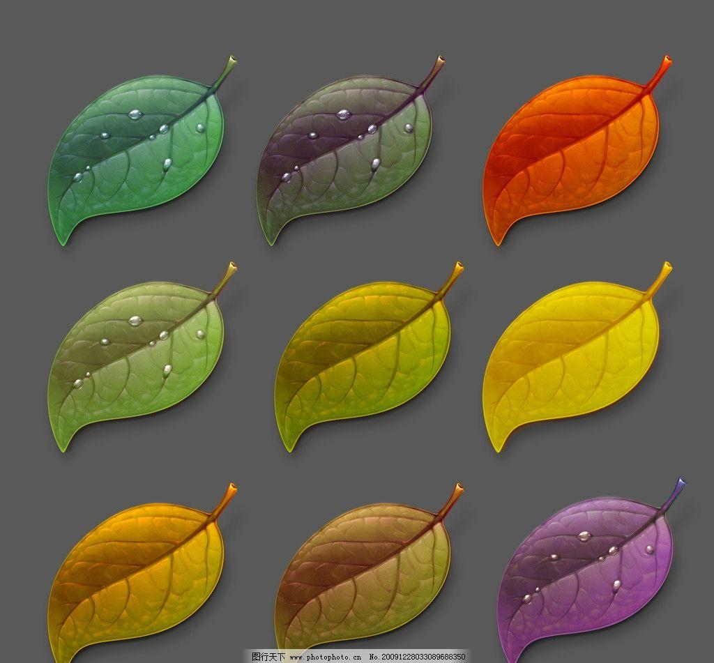 手绘叶子 手绘 叶子 树叶