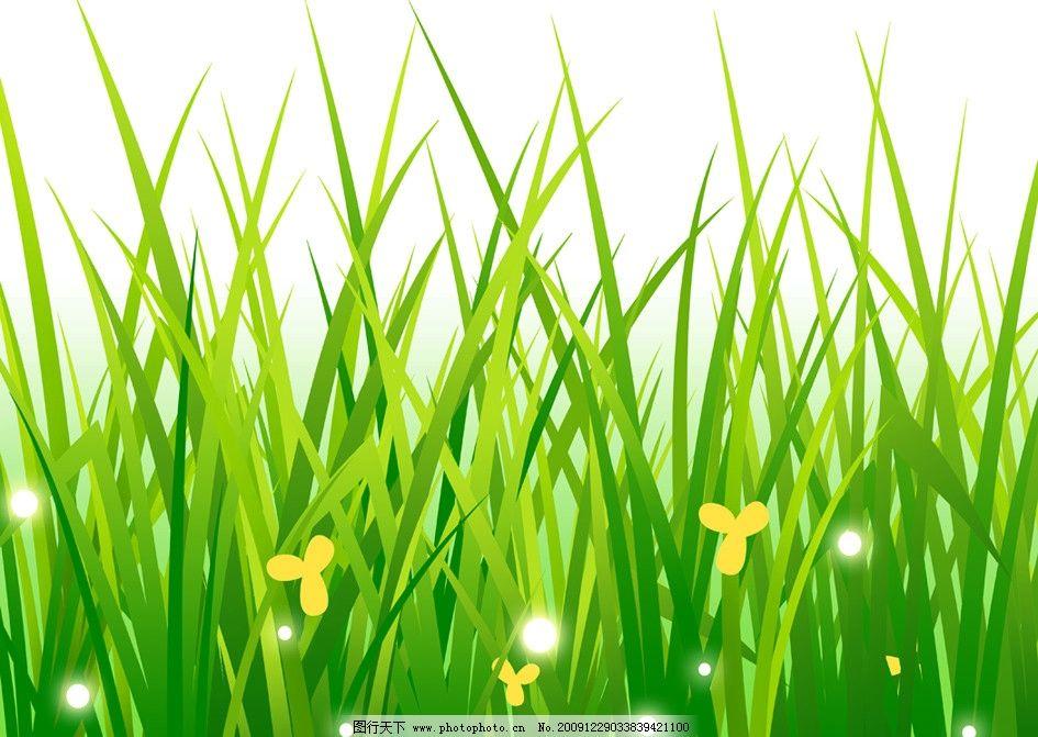 壁纸 成片种植 风景 植物 种植基地 桌面 945_671