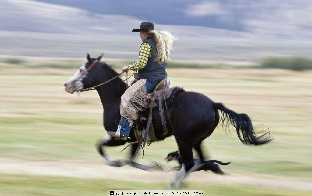 骑马图片_野生动物_生物世界