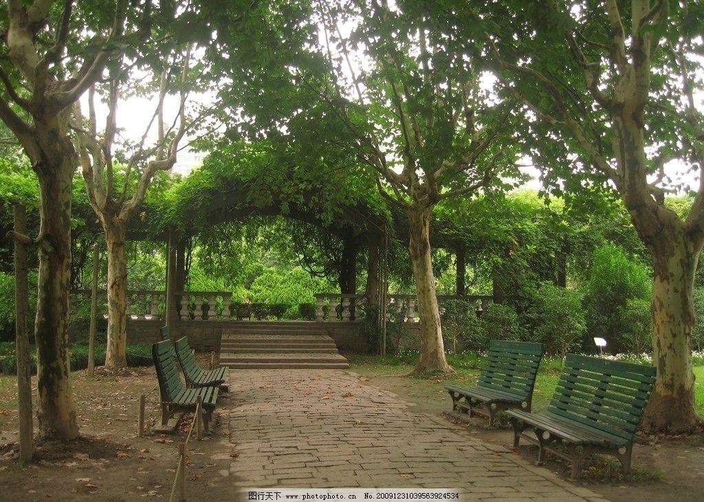 静谧园林 园林 公园 风景 绿色安静 树木 长椅 园林建筑 建筑园林